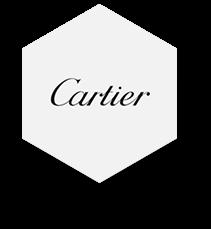 Cartier 2 - Capytech